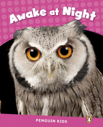 AWAKE AT NIGHT - PK 2