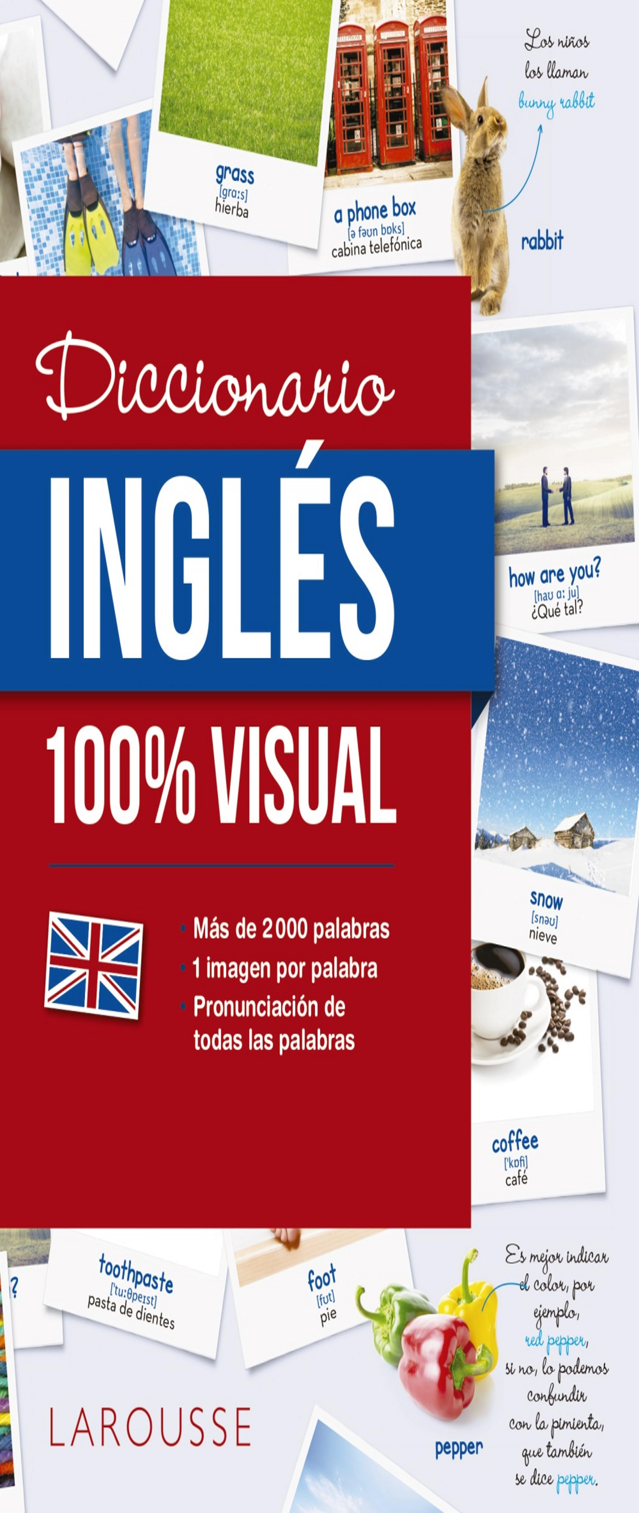 DICCIONARIO INGLES 100% VISUAL