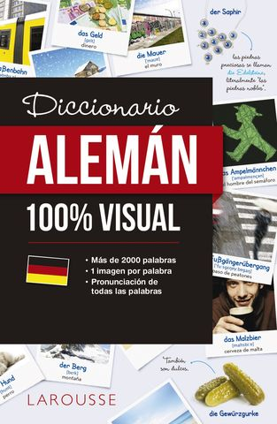 DICCIONARIO ALEMAN 100%  VISUAL