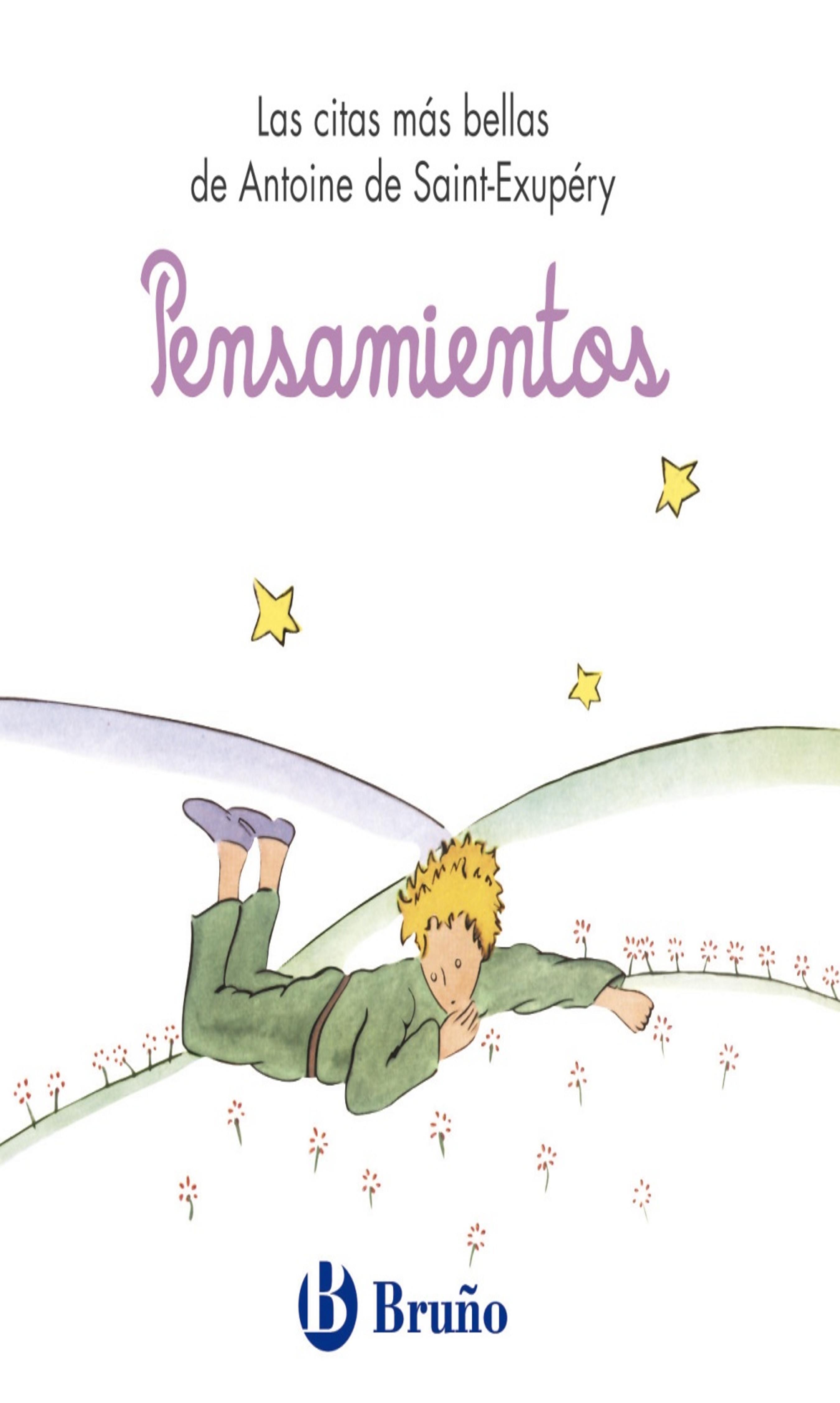 PENSAMIENTOS - Principito