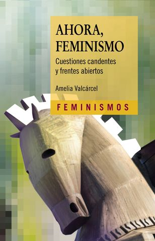 AHORA FEMINISMO CUESTIONES CANDENTES Y FRENTES ABIERTOS