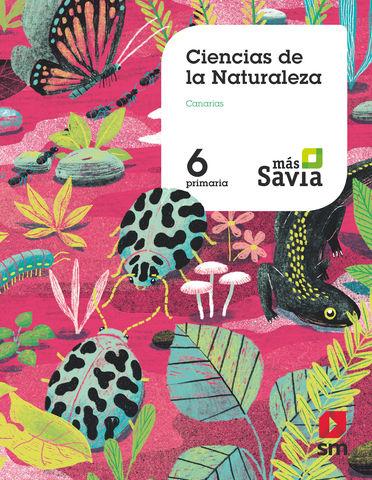 CIENCIAS NATURALEZA 6º PRIM CANARIAS - Más Savia 2019